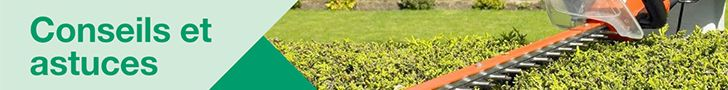 Conseils brico et jardin
